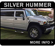 Silver Hummer 4x4